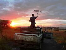 SA Wildlife.jpg