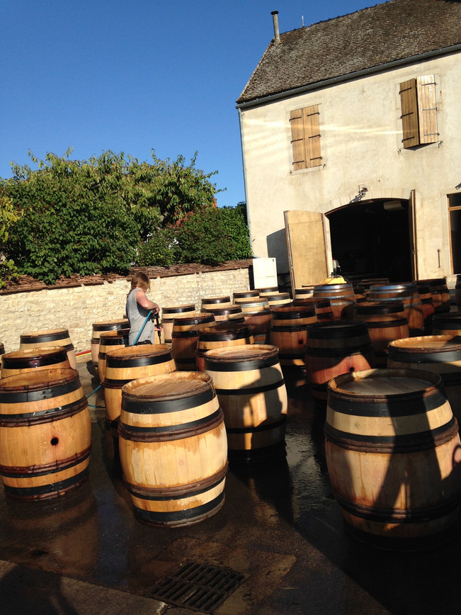 Welcome to Recipes from the French Wine Harvest!