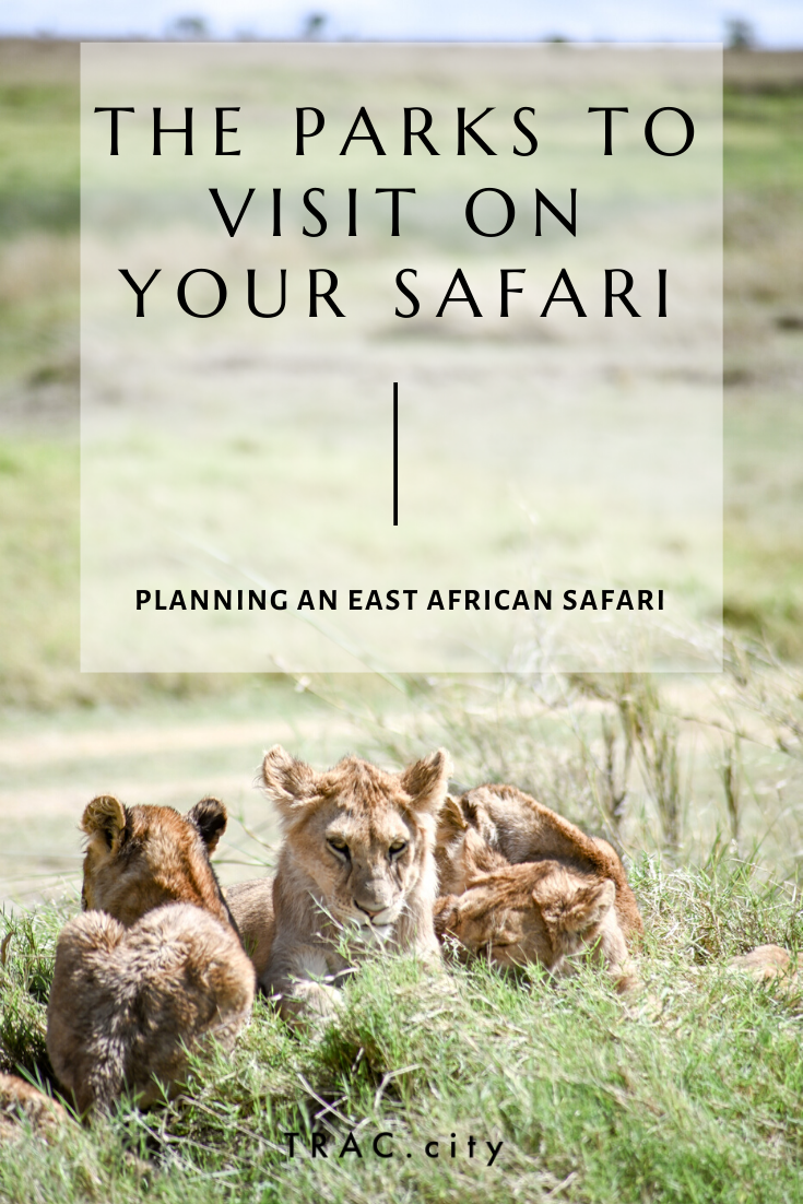 Things I learned when planning my first safari in Tanzania, including which parks to visit and for how long, all for less than $5,000. | Trac.City