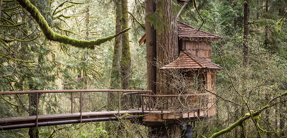 Treehouse Point by Pete Nelson
