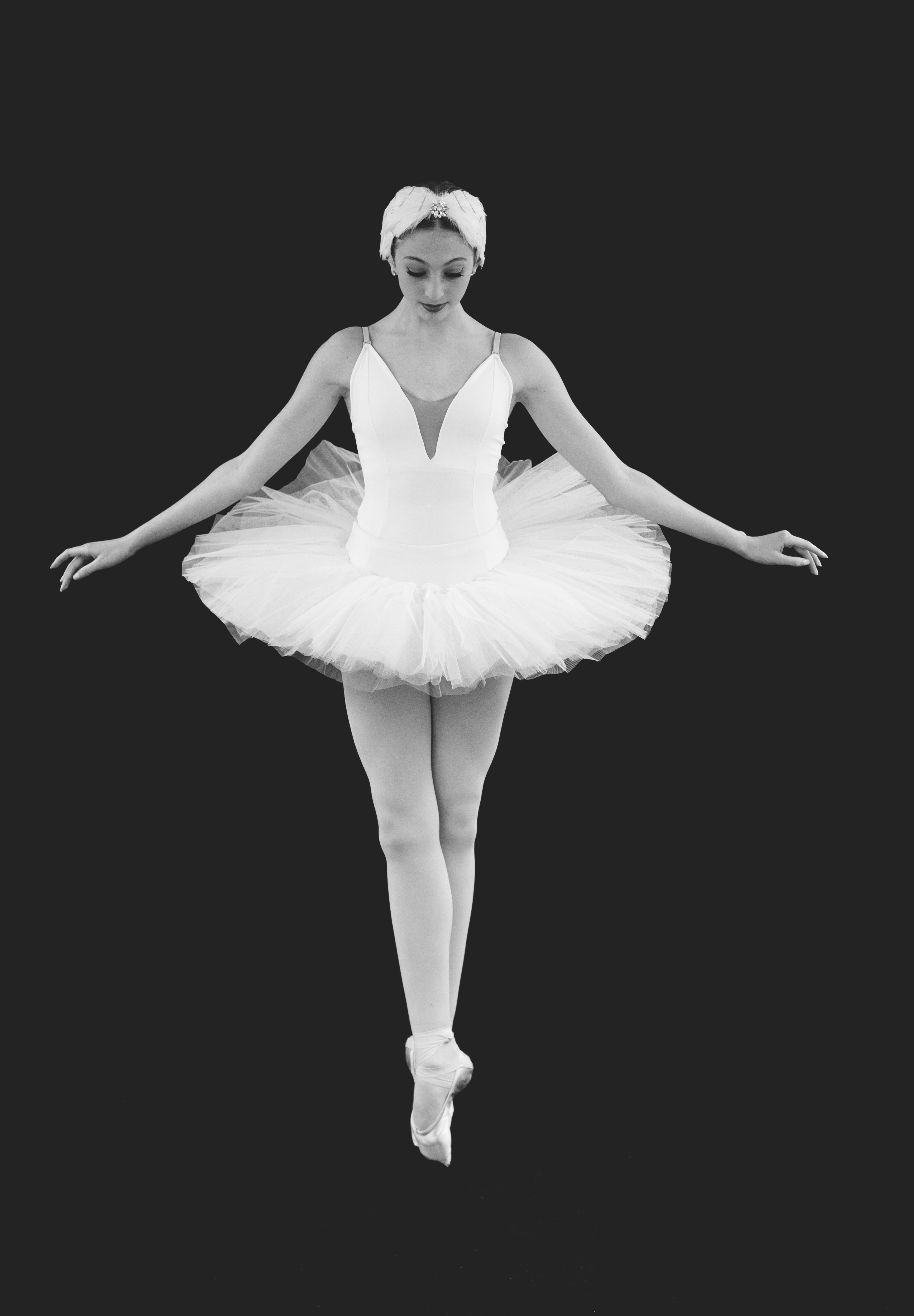 Odessa swan