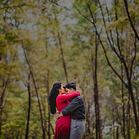Prewed at Forest (1 of 1).jpg
