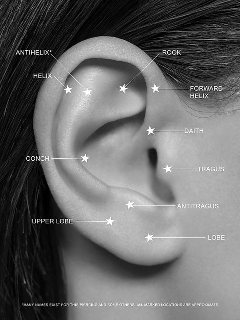 ear piercings.jpg