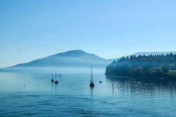 sailboats anchored in the mist off salt spring island