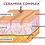 Thumbnail: Crono 3 redensificante renovadora text ligera ceramidas y retinol