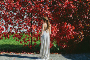 Gemini ~ Willowby By Watters