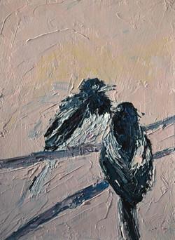 Magpie bird painting, bird lovers