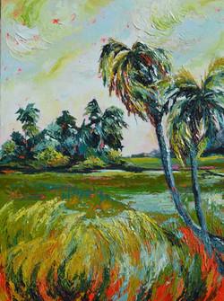 Abstract expressive landscape, rice paddies , sun set, srilanka