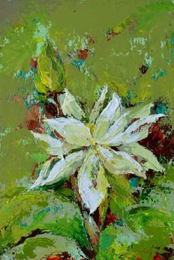 small lotus painting
