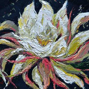 Kadupul flower painting