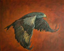 bird painting with red background, art for sale , falcon art