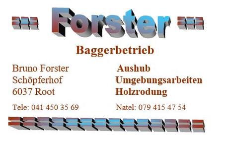 Forster Baggerbetrieb.JPG