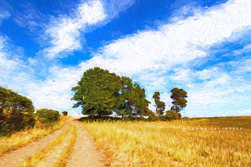 Cheshire Landscape no 3