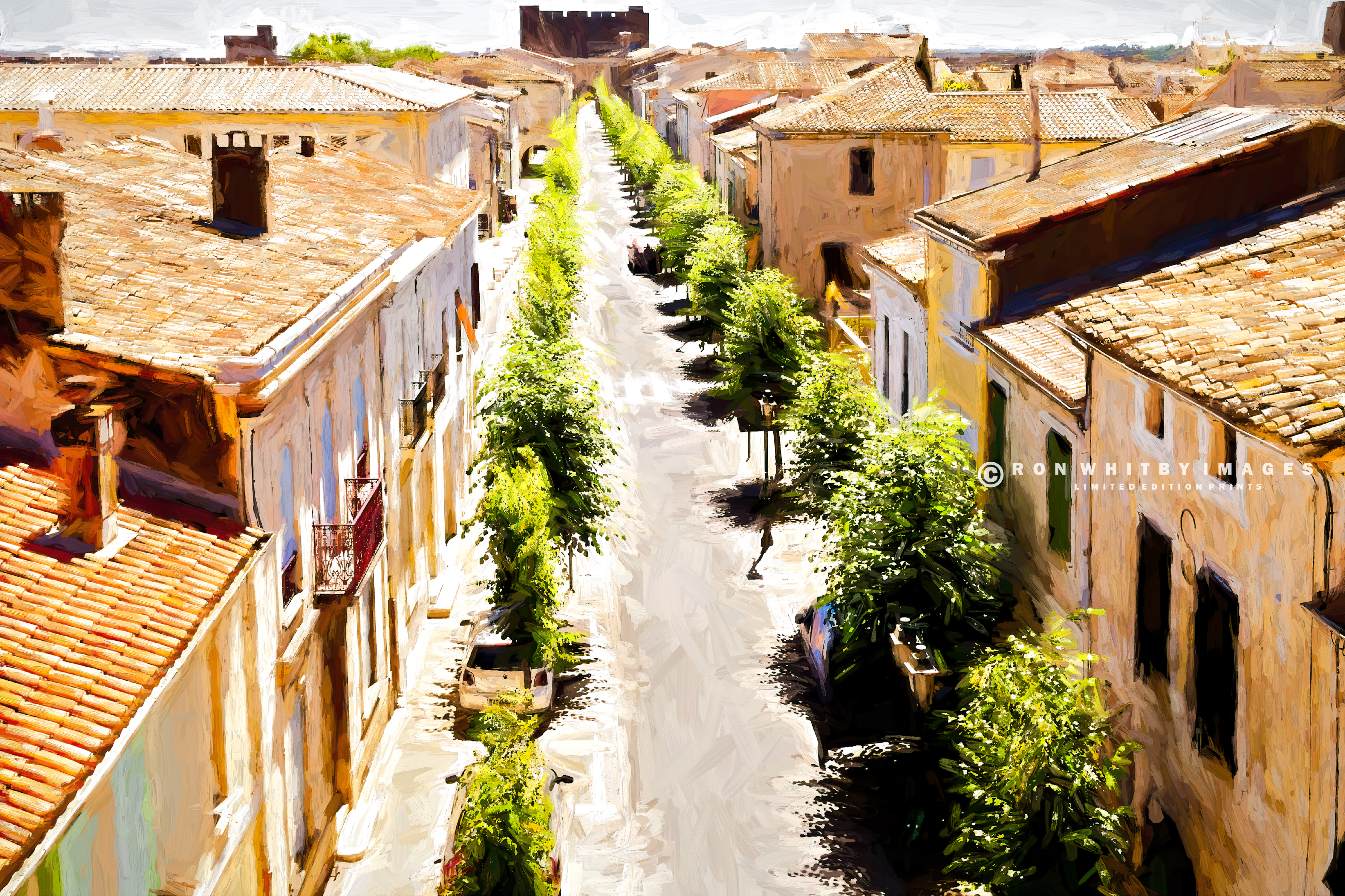 10054 Street in Aigues Mortes