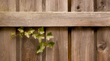 3 Advantages of Choosing Wood Fences
