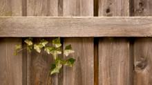 3 Advantages of Choosing Wood Fences
