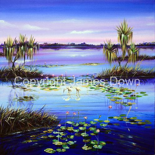 Parry's Lagoon