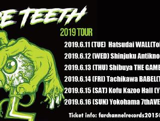 BARE TEETH(FRANCE) JAPAN TOUR 2019 情報!