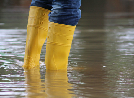 Iowa Western SBDC Offers No Cost Help For Businesses Affected by SW Iowa Floods
