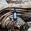 Thumbnail: Full Spectrum Cannabinoid Oil