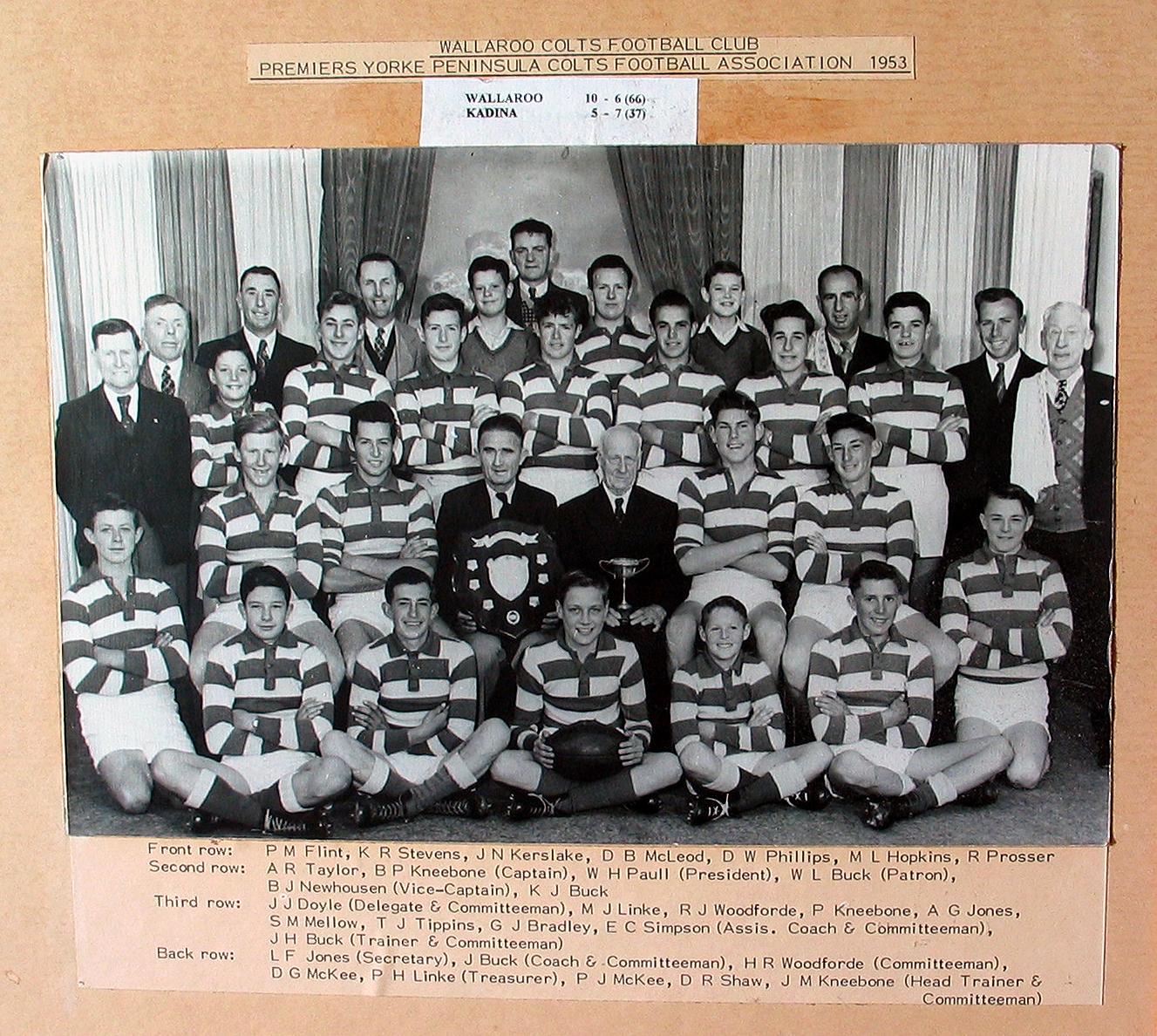 Colts Premiers 1953