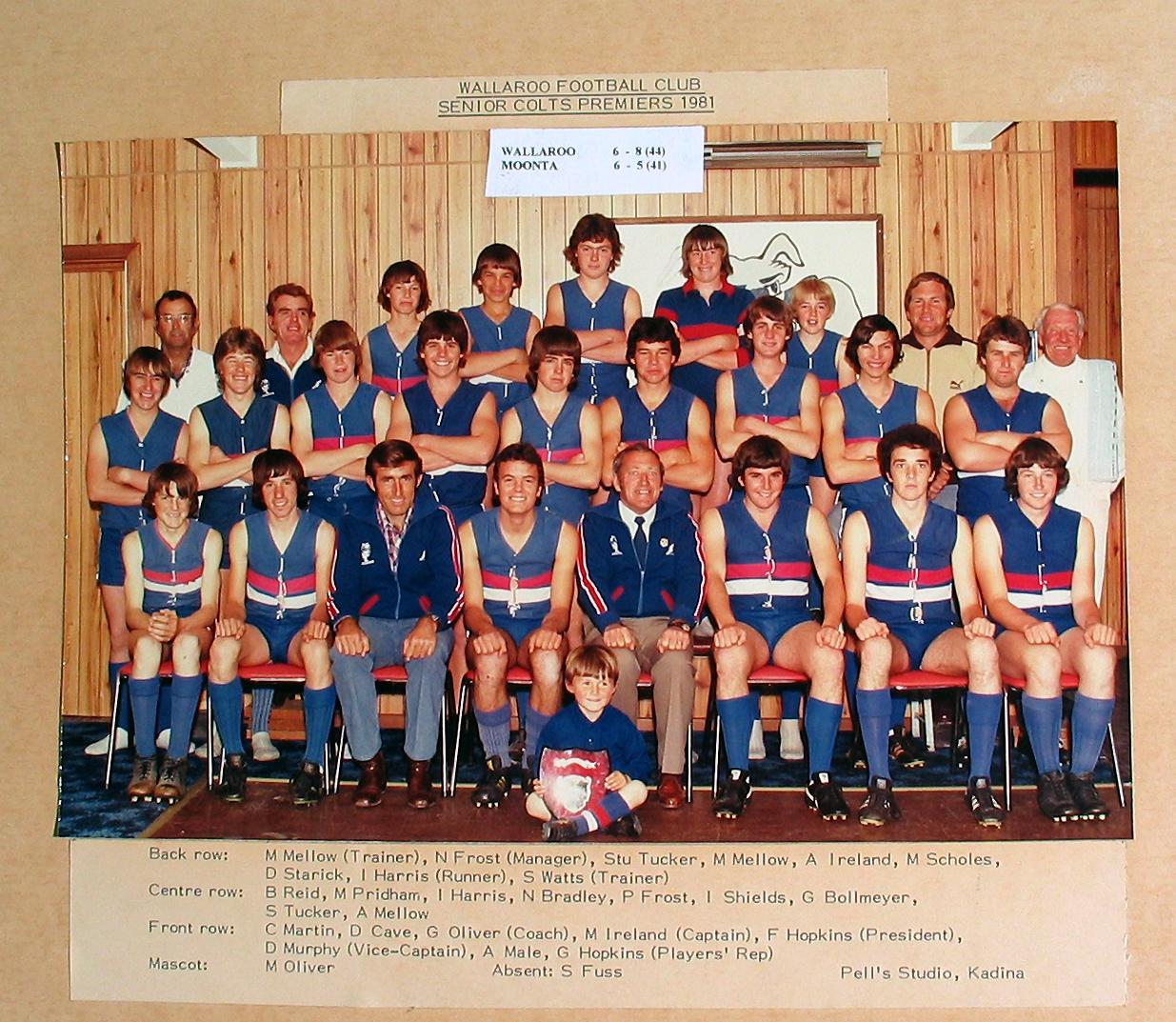 Senior Colts Premiers 1981