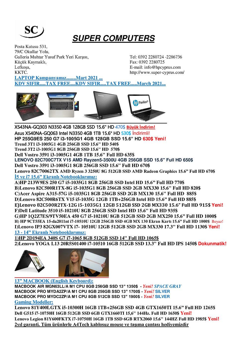 laptopmartenson29x40.jpg