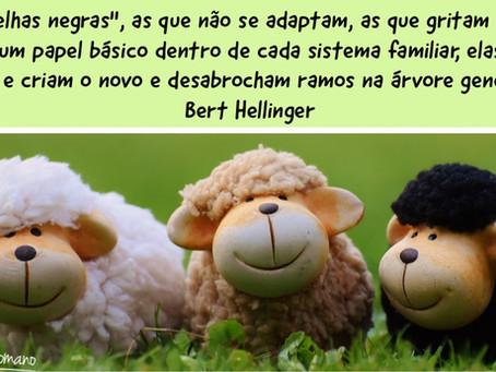 """As """"Ovelhas Negras"""" da Família por Bert Hellinger"""