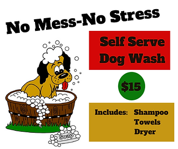 Self Serve Dog Wash (1).png