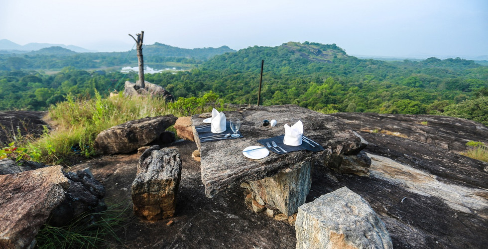 Dining on the Rock