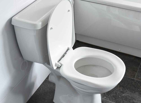 What shouldn't be flushed down the Toilet?