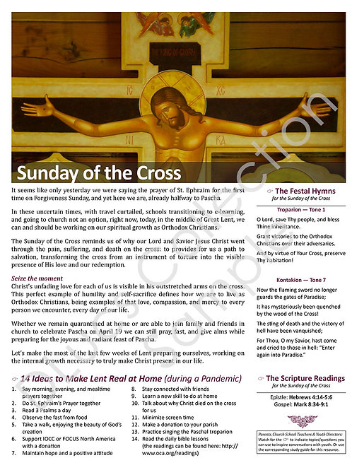 3rd Sunday of Lent: The Holy Cross