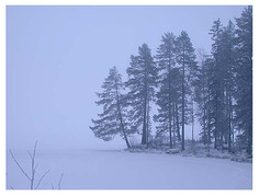 finland1-3.jpg