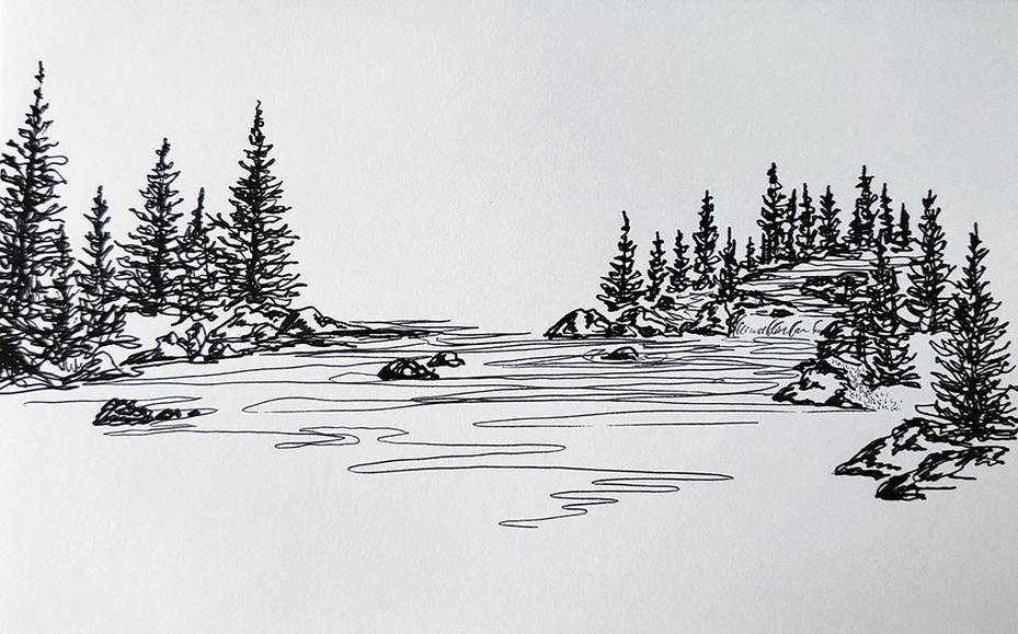 Along the Stream