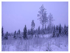 finland1-4.jpg
