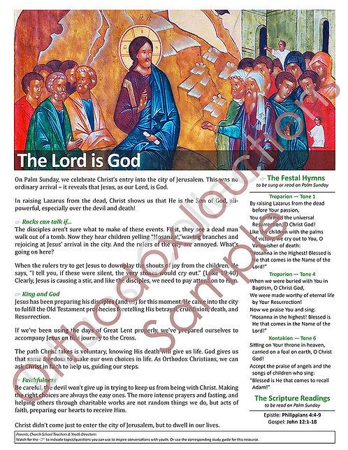 Unit 6: Lesson 5: Palm Sunday (Entry into Jerusalem)