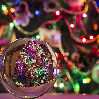 Julgran sedd genom kristallkula