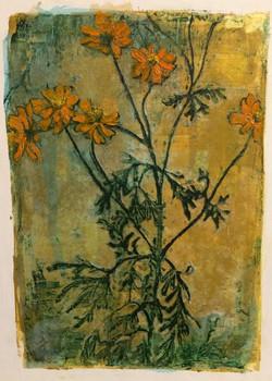 Autumnal Flora
