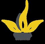 Coenda Medical logo (2).png