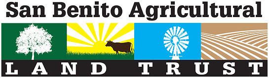 SBALT-Logo 12-6-18.jpg