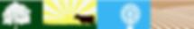 SBALT logo cropped - 1.png