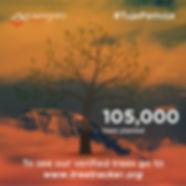 100802_Treesplanted.jpg