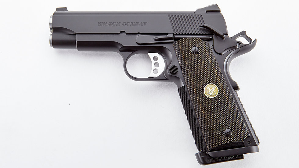 WILSON COMBAT THE PROFESSIONAL   45ACP