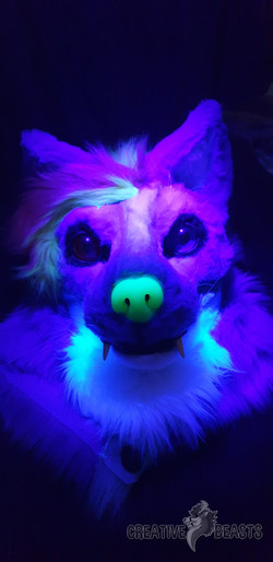 Firefly Blacklight