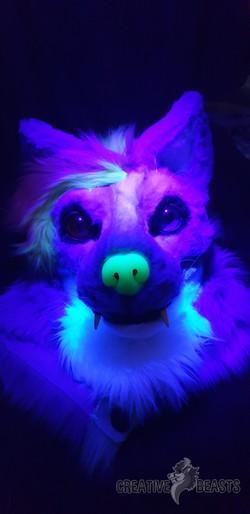 Firefly Blacklight