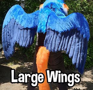Large Wings.jpg