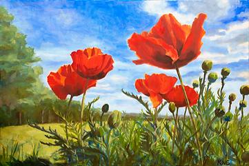 Poppies medium size file.TIF