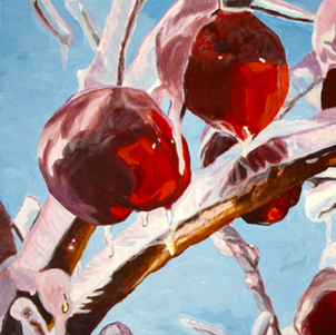 Winter Apples in Maine