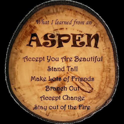Home - Aspen Wisdom sign