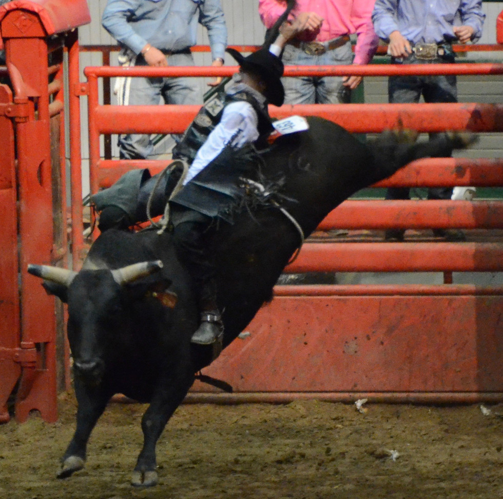 A ripping good time - A night at the rodeo